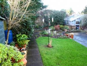 Back garden - long view, Jan 2014