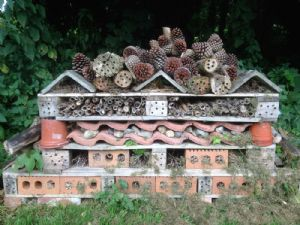 Insect Palace