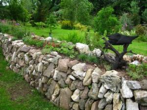 Elizabeth's garden