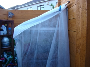 Greenhouse covered with hort. fleece