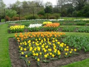 Visit to the Botanics