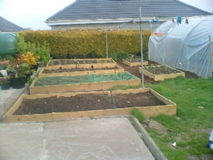 a view of my new raised veg beds