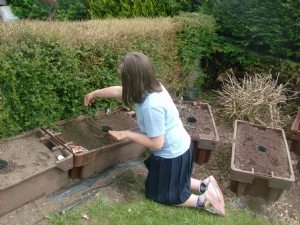 Orla my Niece done her sowing yesterday evening.