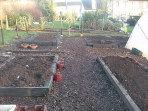 Vegetable garden work.