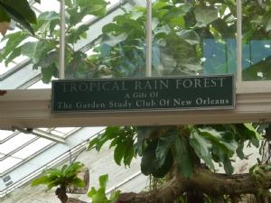 Tropical Rain Forest New Orleans Botanic garden