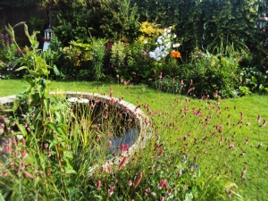 Love your garden!