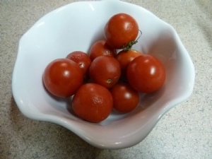 Some of Dad's tomatoes today!