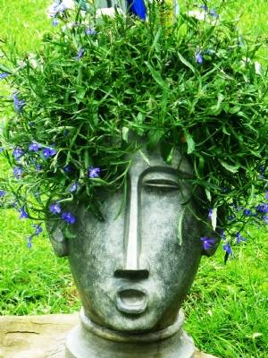 Blue Rinse Hair