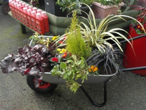 One of two wheelbarrows