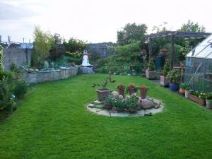 My garden - June 2009