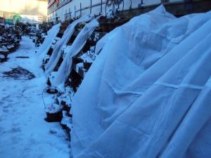 Fleece-covered bedding
