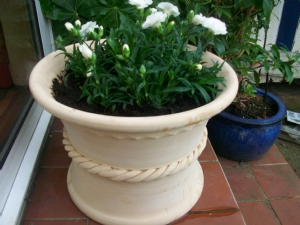 Carnations in hand-crafted pot