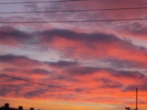 A rare sunrise