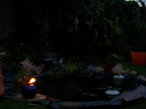 new pond by night (unfinished)