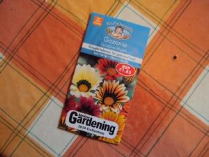 Gazania 'Sunshine Mixed'