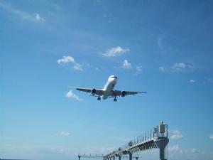 Houseplants and aeroplanes