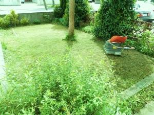 Start on the front garden