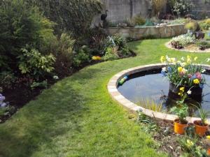 My garden this day last year
