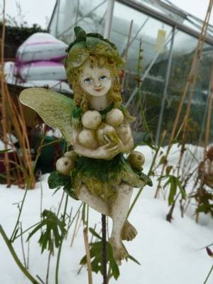 Frozen Fairy today (oops! she lost a wing)