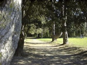 St. Anne's Park, Raheny, Dublin.