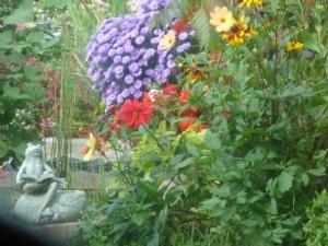 Still a bit of colour in greenhouse border