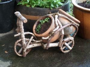 Bicycle planter with pansies/violas
