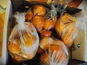 Seville Marmalade Oranges
