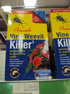 The dreaded Vine Weevil
