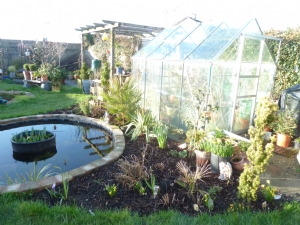 greenhouse border today - all tidy