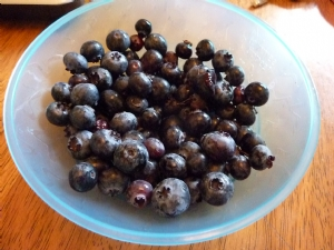 Last of the blueberries