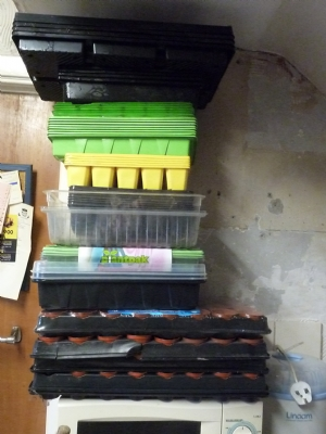Some of my seed trays