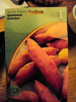 Disappointed with sweet potato