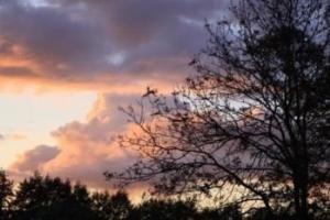 Amazing Sky