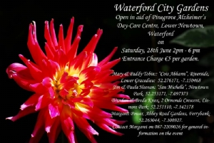 Waterford City Gardens Open for Charity