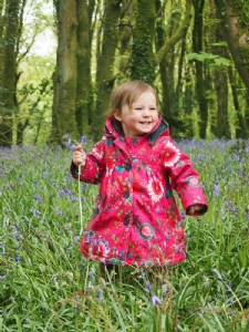 Granddaughter, Olivia, in Bluebells.