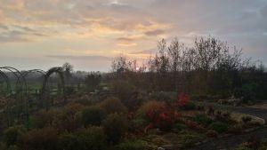 November at Gortnalee