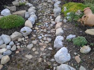 Path through the Rockery