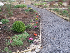 Herbaceous border brightened up