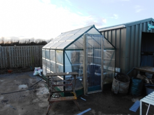 Greenhouse looking better