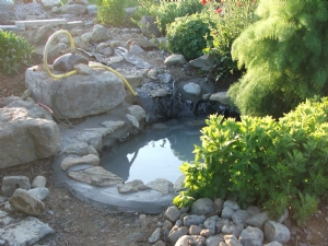 New pond almost done .....