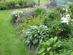 two perennial  beds