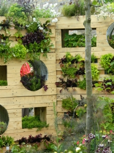 Vertical pallets as a green wall