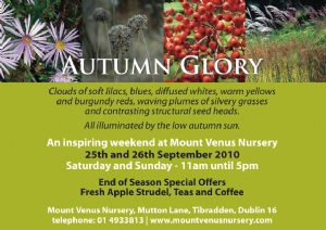 Mount Venus, Saturday 25th