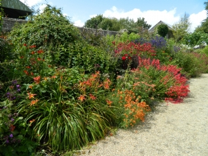 red side of Rober Miller's herbaceous borders