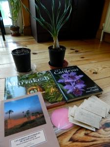 Gardening Pressies