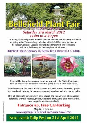 Bellefield Plant Fair
