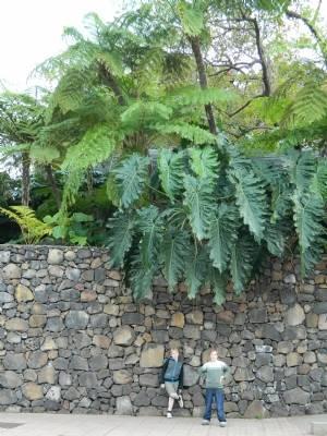 Outside the Botanic Gardens
