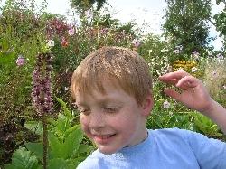 Eucomis bicolor & Josh