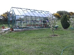 Greenhouse Border