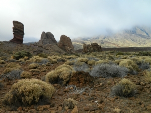At the base of the Teide Volcano